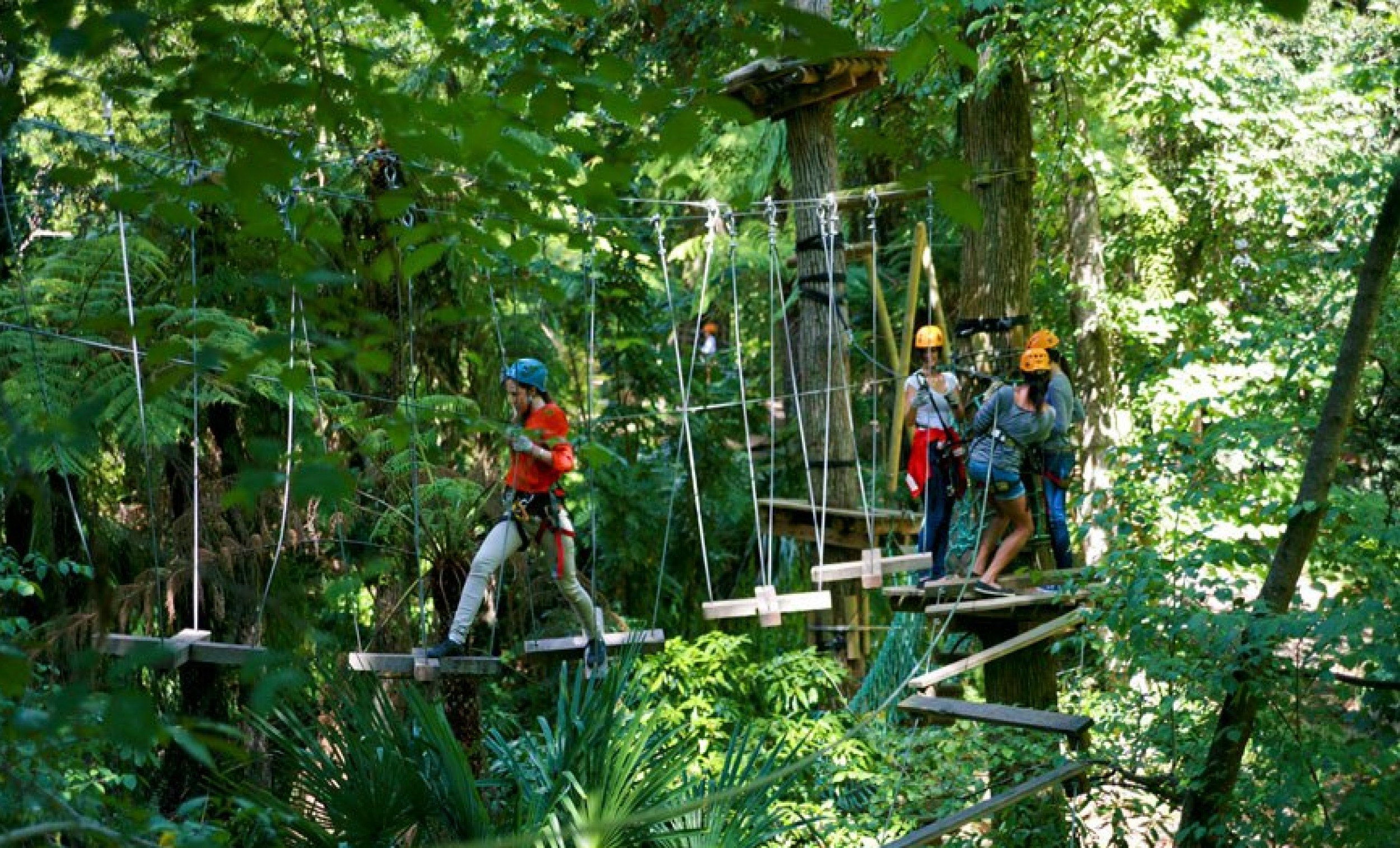 High Rope Courses